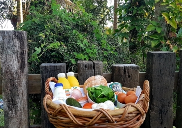 Fresh Farmers Basket